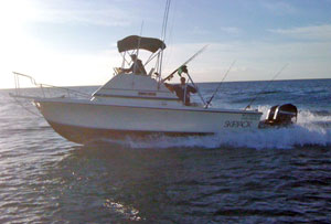 Reel and Hooked - 27 ft Walk Around Offshore Cruiser